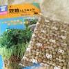 豆苗 えんどう豆 グリンピース スプラウト 種 栽培 育て方 作り方 容器 キッチンファーム 中原採種場