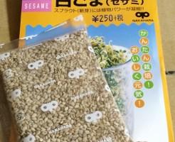 白ごま 白ゴマ ごま スプラウト セサミ 芽 種 栽培 もやし系スプラウト 育て方 栄養