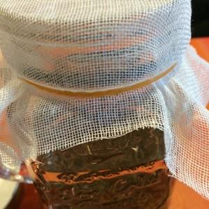 ブロッコリースプラウト かいわれブロッコリー 芽 ブロッコリー スプラウト 瓶 ジャー 栽培 育て方 蓋 ガーゼ 100均 ドリンクジャー アミ