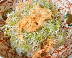 ブロッコリースプラウト かいわれブロッコリー 食べ方 レシピ どんぶり 栽培 自家製 手作り 生 加熱 栄養