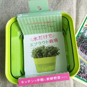 スプラウトファーム リッチェル スプラウト 芽 栽培 容器 水耕栽培 ザル 網 ブロッコリースプラウト おすすめ 育て方 水だけ