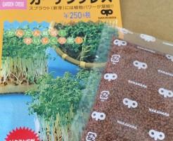 ガーデンクレス スプラウト 芽 新芽 種 栽培 水耕栽培 コショウソウ 胡椒草 容器 育て方
