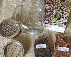 スプラウト 栽培 キット 種 容器 ジャー グラスジャー ドリンクジャー セット 瓶 ブロッコリースプラウト かいわれ大根 育て方 簡単