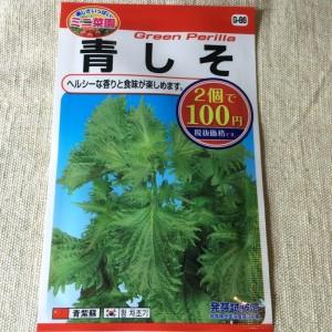 ダイソー 100均 種 野菜 ハーブ 種子 青シソ 青しそ 紫蘇 栽培 育て方 家庭菜園 量
