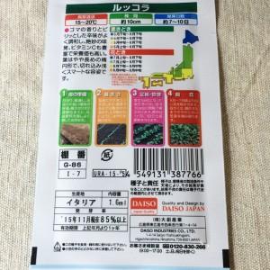 ダイソー 100均 種 野菜 ハーブ 種子 ルッコラ ロケット 栽培 育て方 家庭菜園 量 産地